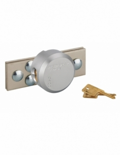 Porte-cadenas et cadenas, acier, protection renforcée pour fermeture, cadenas Ø73mm, zingué, 2 clés - THIRARD Accueil