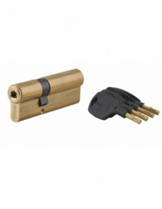 Cylindre de serrure double entrée Surveyor, 31x61mm, laiton, anti-arrachement, 4 clés - THIRARD Cylindre à double entrée