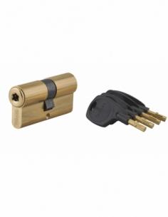 Cylindre de serrure double entrée Surveyor, 31x31mm, laiton, anti-arrachement, 4 clés - THIRARD Cylindre à double entrée