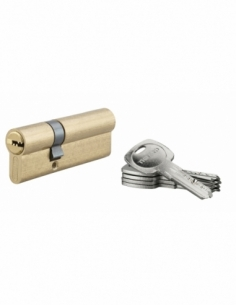 Cylindre de serrure à double entrée Tiger 6, 30x60mm, laiton, anti-arrachement, anti-perçage, 5 clés - THIRARD Cylindre à dou...