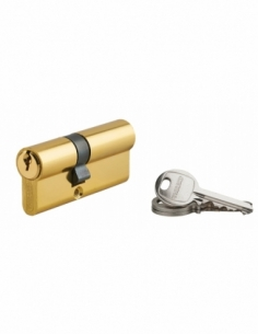 Cylindre de serrure double entrée Ecopro, 30x40mm, aluminium, anti-arrachement, 3 clés, laiton - THIRARD Cylindre à double en...