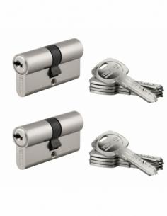 Lot 2 cylindres de serrure double entrée Trafic 6, 30x30mm, anti-arrachement, s'entrouvrant, nickel, 5 clés/cylindre - THIRAR...
