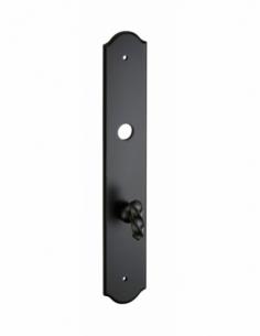 Plaque de propreté à condamnation, fer, noir - THIRARD Poignée de porte