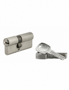 Cylindre de serrure à double entrée, 30x40mm, nickel, 5 clés réversibles - Serrurerie de Picardie Cylindre de serrure