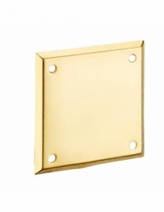 Plaque de propreté pour porte d'entrée, 60x60mm, laiton - THIRARD Verrous