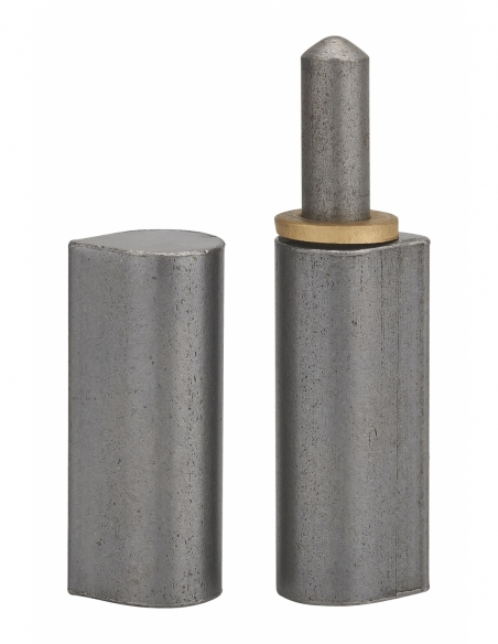 Charnière de porte d'entrée à souder, acier, 120mm, bague laiton - THIRARD Equipement
