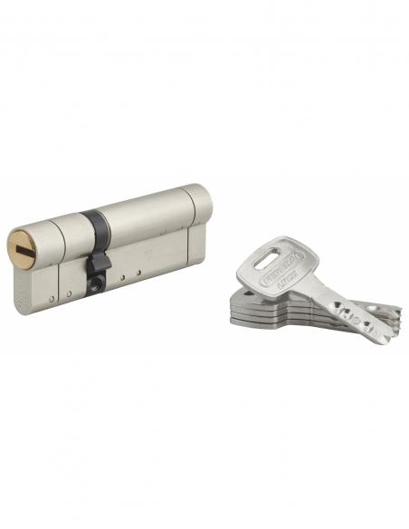Cylindre de serrure double entrée Federal S, 30x60mm, nickel, anti-arrachement, anti-perçage, 5 clés - THIRARD Cylindre de se...