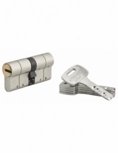 Cylindre de serrure double entrée Federal S, 30x30mm, nickel, anti-arrachement, anti-perçage, 5 clés - THIRARD Cylindre de se...