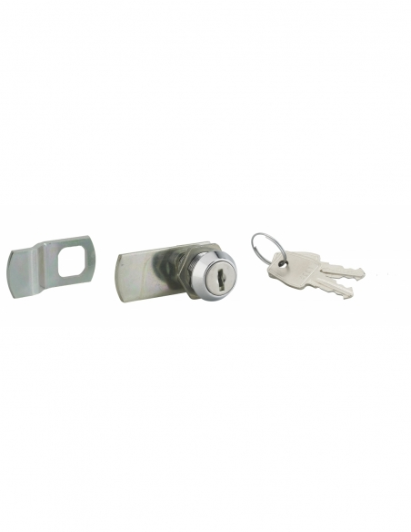 Batteuse avec came pour boîte aux lettres, nickel, longueur 19mm, 2 clés - THIRARD Serrure boîte aux lettres