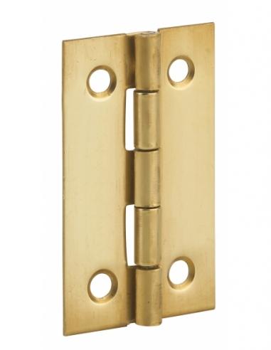 Charnière de porte, 50x30mm, laiton - THIRARD Equipement