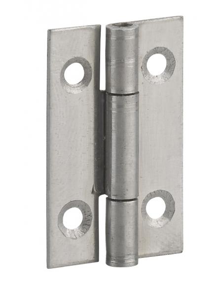 Charnière de porte, 30x19mm, acier - THIRARD Equipement