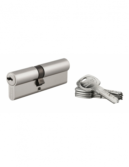 Cylindre de serrure double entrée Trafic 6, 40x50mm, nickel, anti-arrachement, anti-perçage, 5 clés - THIRARD Cylindre de ser...