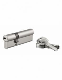 Cylindre de serrure double entrée Trafic 6, 30x60mm, nickel, anti-arrachement, anti-perçage, 5 clés - THIRARD Cylindre de ser...