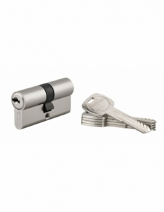 Cylindre de serrure à double entrée Trafic 6, 30x30mm, nickel, anti-arrachement, anti-perçage, 5 clés - THIRARD Cylindre de s...