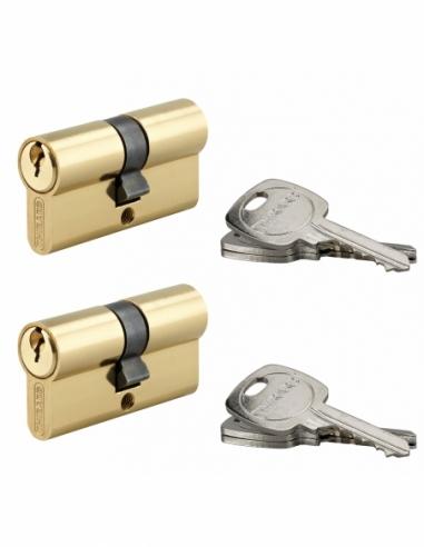 Lot de 2 cylindres de serrure double entrée, 30x30mm, anti-arrachement, s'entrouvrant, laiton, 3 clés/cylindre - THIRARD Cyli...