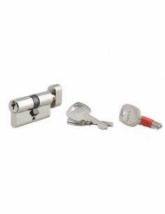 Cylindre de serrure double entrée clé modifiable, 30x30mm, anti-arrachement, anti-perçage, nickel, 2x3 clés - THIRARD Cylindr...