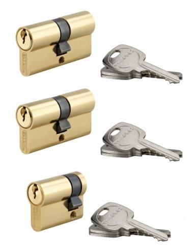 Lot 2 cylindres 30x30mm + 1 demi-cylindre 30x10mm s'entrouvrant, 9 clés - THIRARD Cylindre de serrure