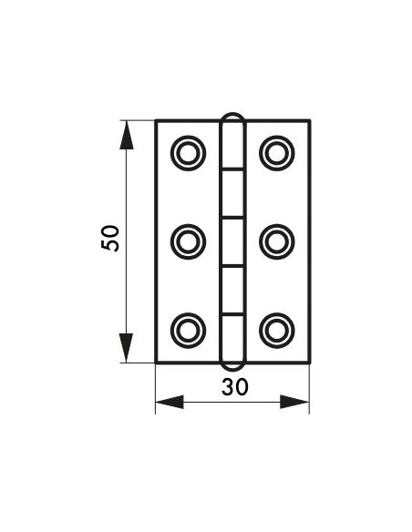 Charnière de porte, 50x30mm, inox 309 - THIRARD Equipement