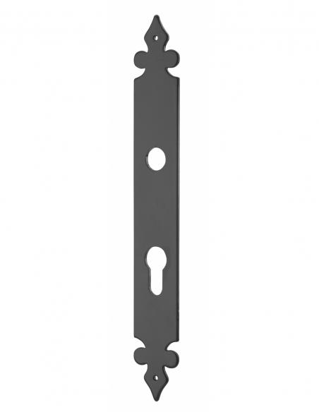 Plaque de propreté alu, trou de cylindre, noir - THIRARD Poignée