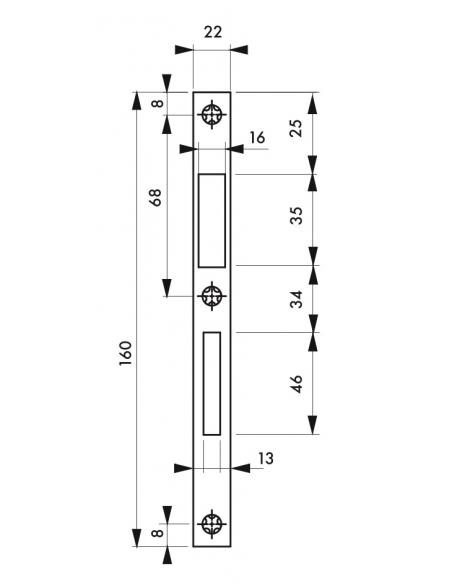 Gâche plate inox, coffre réduit 160 x 22 x 1,5 mm - THIRARD Gâche de porte
