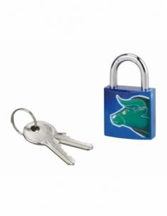 Cadenas à clé Taureau, acier, intérieur, anse acier, 30mm, 3 clés - THIRARD Cadenas