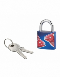 Cadenas à clé Poisson, acier, intérieur, anse acier, 30mm, 3 clés - THIRARD Cadenas
