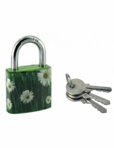 Cadenas à clé Green Idea Marguerite, acier, intérieur, anse acier, 30mm, 2 clés - THIRARD Cadenas à clé