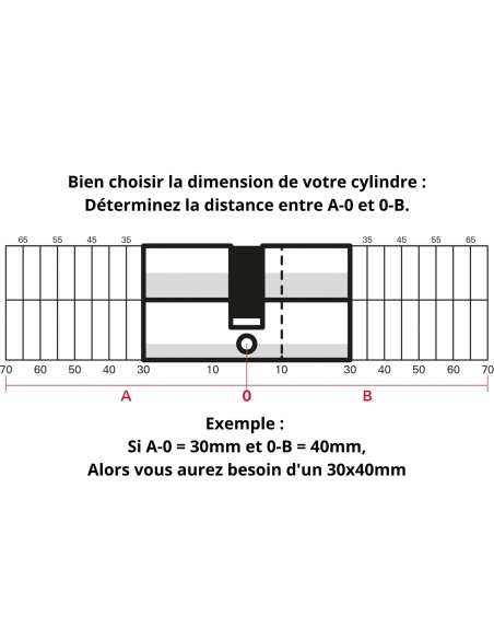 Cylindre de serrure Trafic 12, 30x30mm, nickel, anti-arrachement, anti-perçage, anti-casse, 5 clés - THIRARD Cylindre de serrure