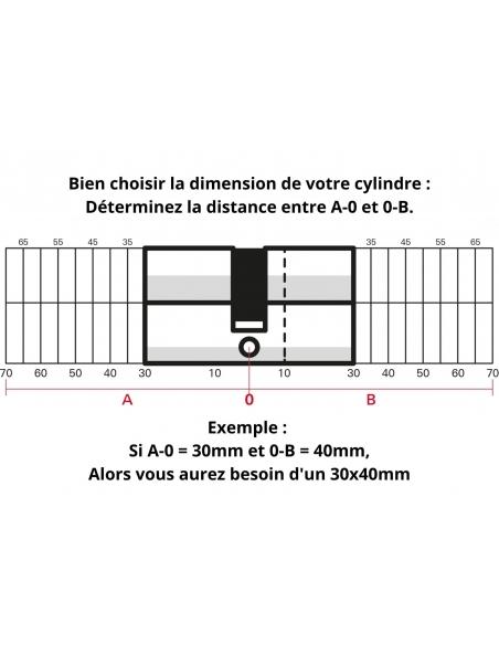 Cylindre de serrure double entrée Trafic 6, 30x30mm, nickel, anti-arrachement, anti-perçage, panneton réduit, 5 clés - THIRAR...
